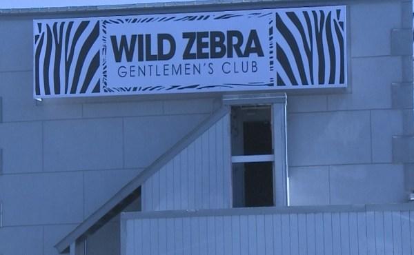 wild zebra strip club cheaters_161362