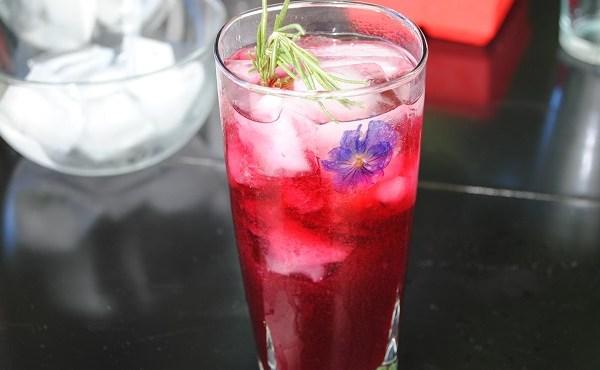 Cocktail Guru Summer Ice Drinks_198424