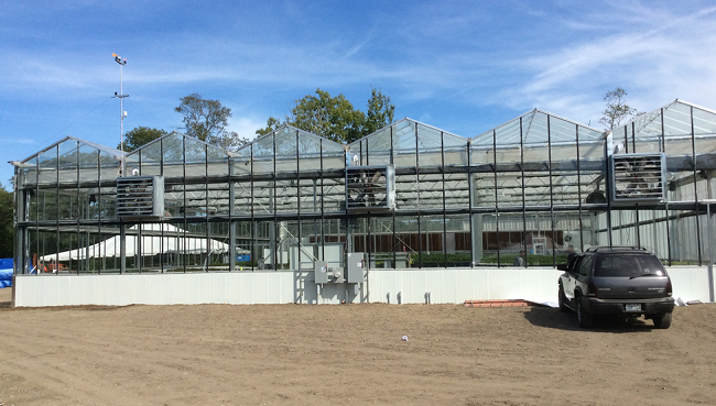 Hydroponic greenhouse_210422
