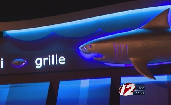 shark bar and grille_155235