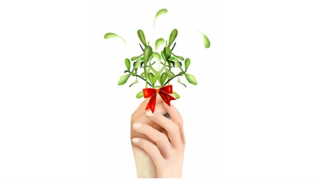 mistletoe generic_238420