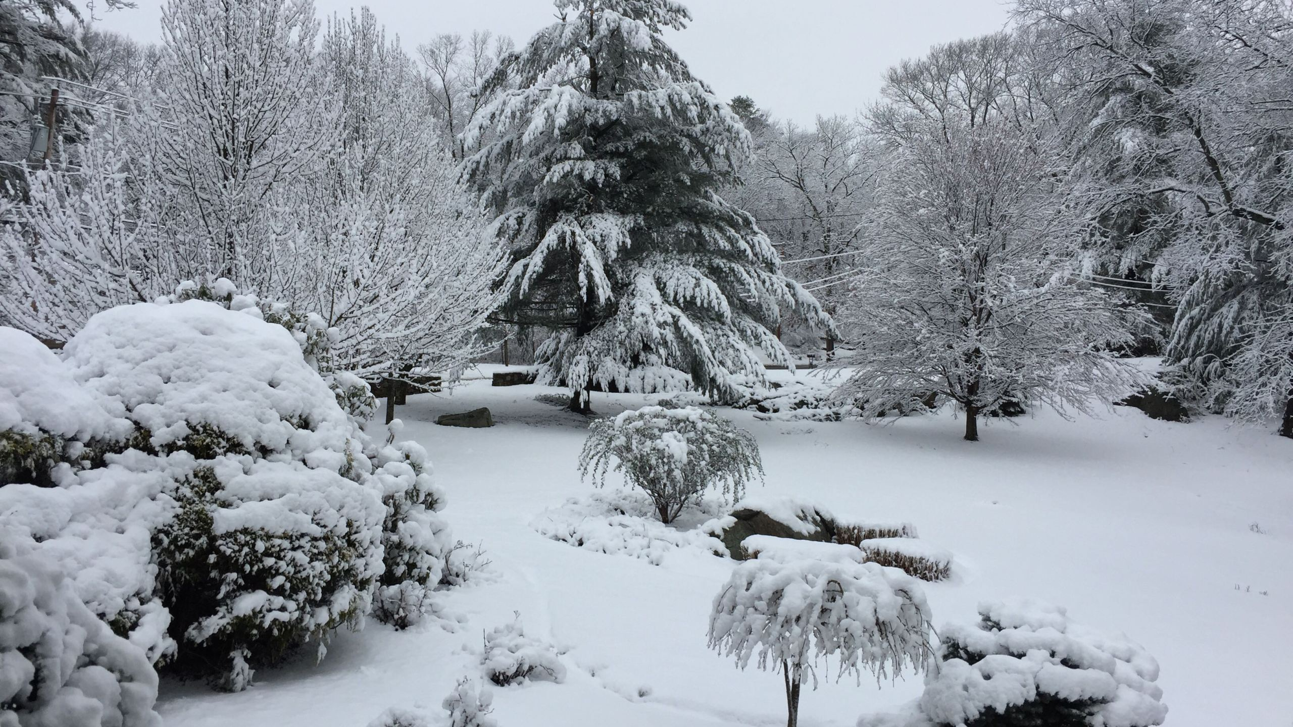 Snow in Lincoln_284213
