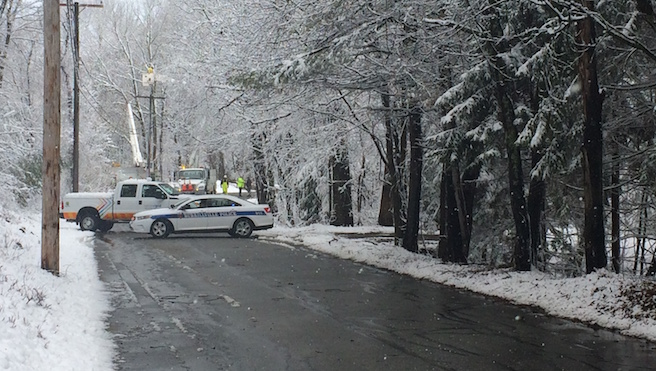 Trees down on West Ironside Road - Burrillville_284201