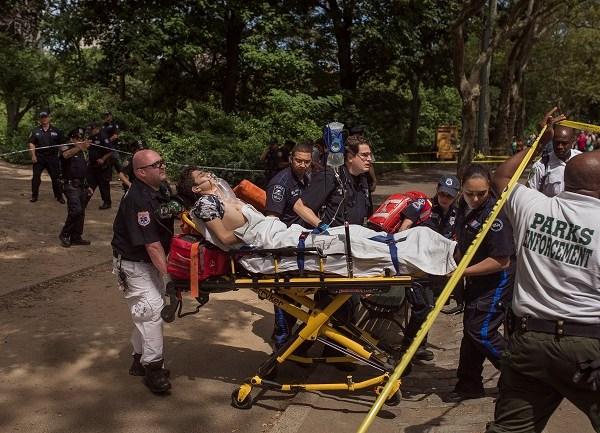 Central Park-Man Injured_325293