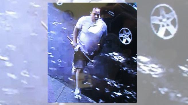 Newport breaking and entering suspect_336237
