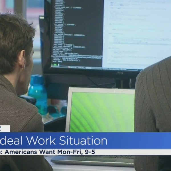 The Buzz: The Ideal Work Situation