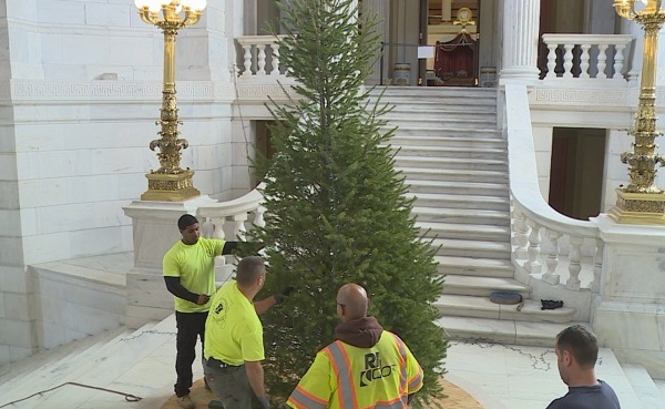 State House small Christmas tree_386800