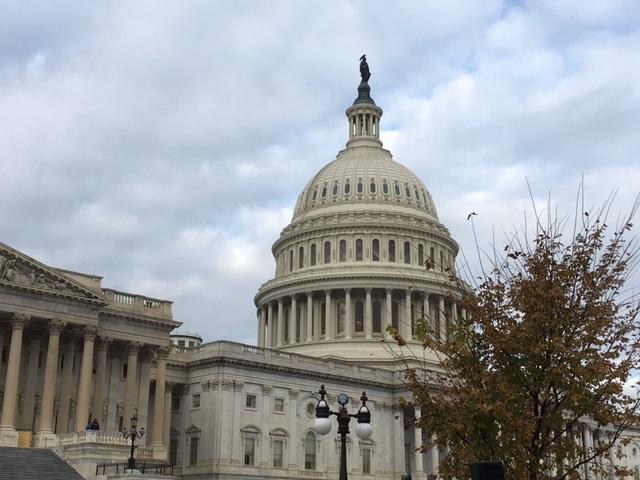 U.S. Capitol_387676
