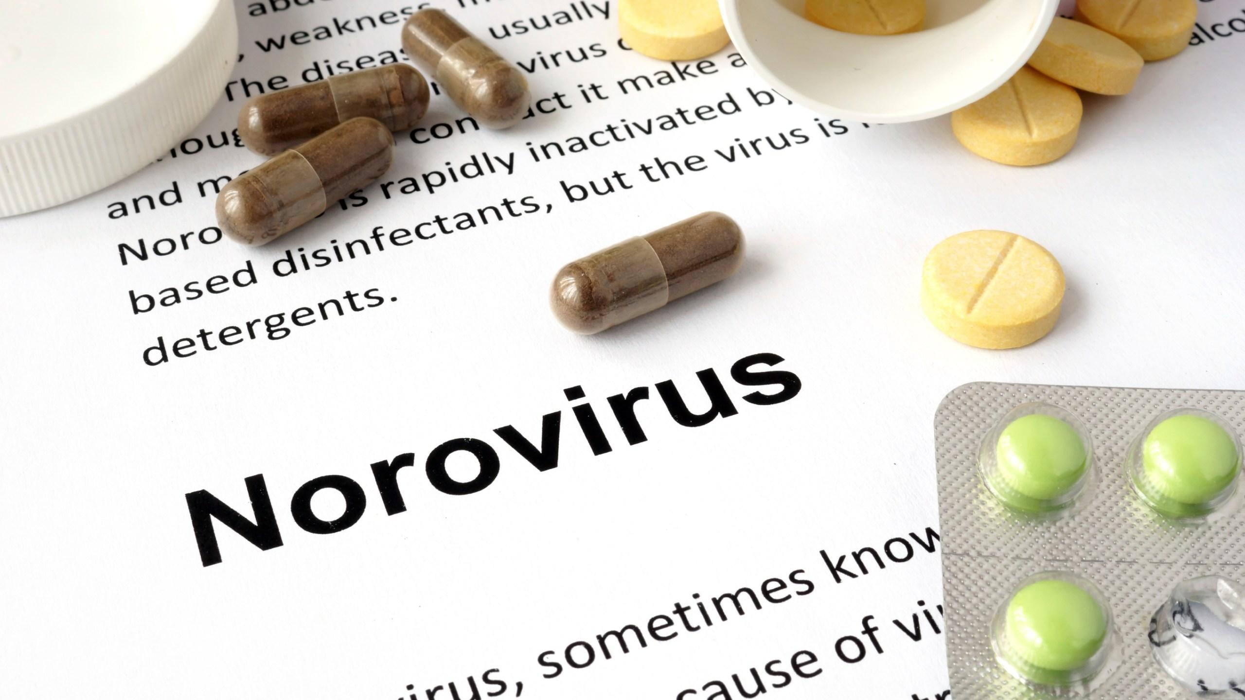 istock generic norovirus_275654
