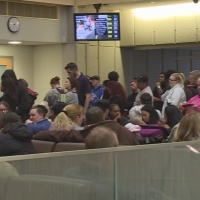 DMV back up and running after license transactions go down