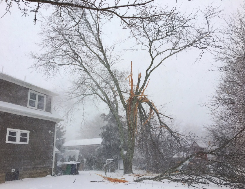 thundersnow-damage_422796