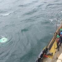 Block Island sunk buoy 1_467085