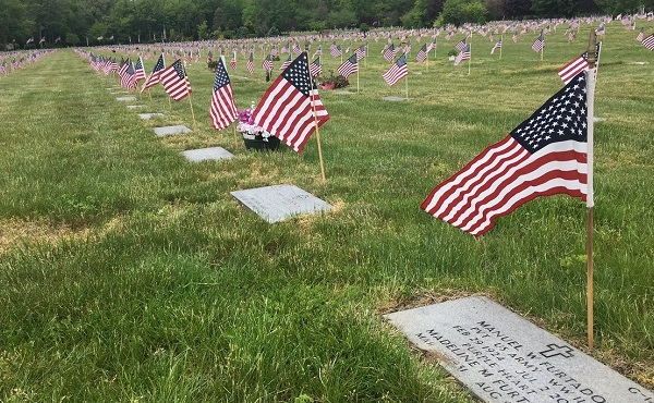 vets-cemetery-flags_485795