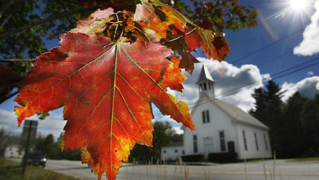 Fall Foliage Forecast_535896