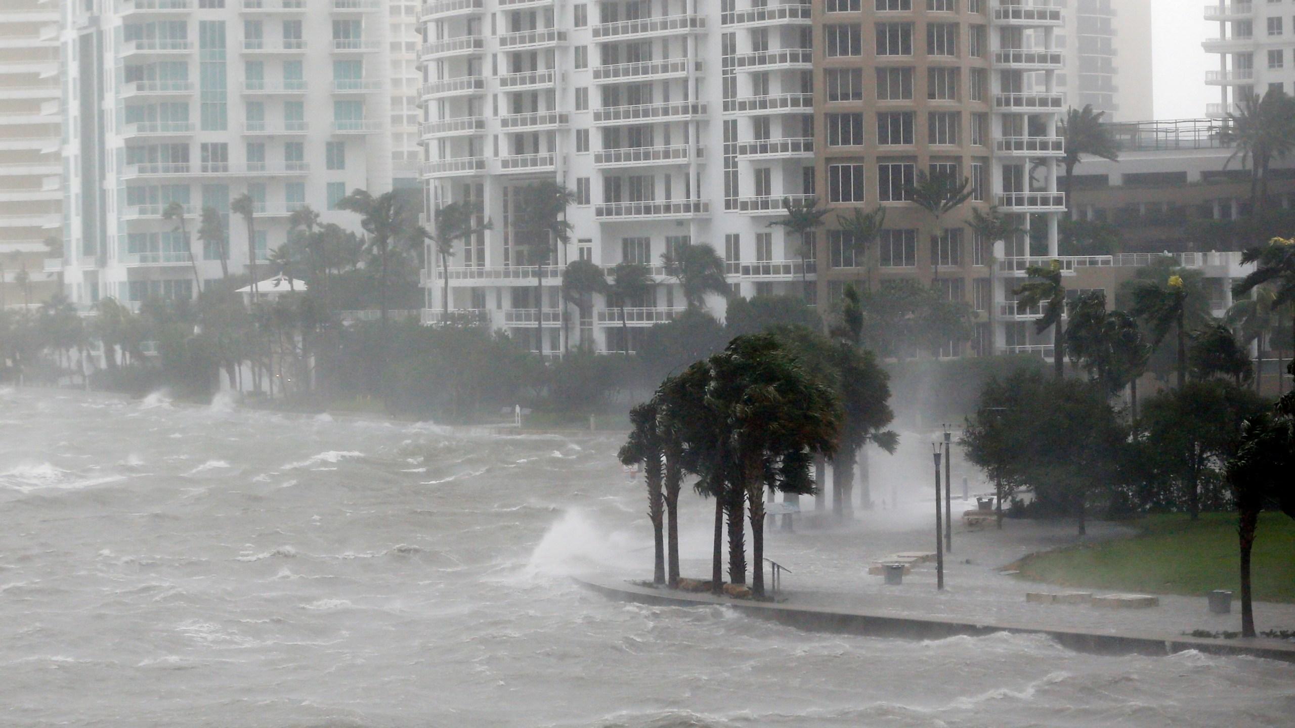 APTOPIX Hurricane Irma_549093