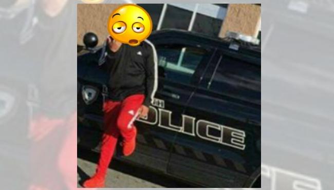 dartmouth-police-cruiser-poser-blend_602750