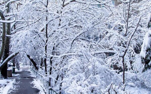 sxc-winter-weather-scene_1521135814227.jpg