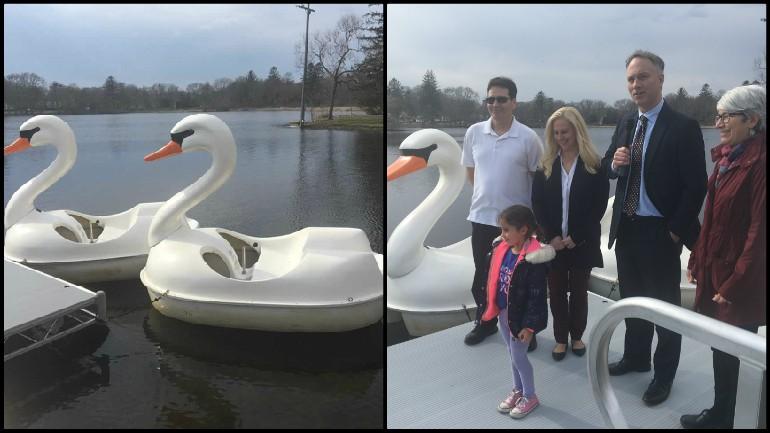 NB Swan boats_1523664625049.jpg.jpg