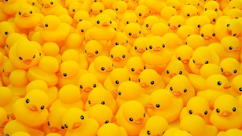 Rubber Duck generic_1524533954858.jpg.jpg