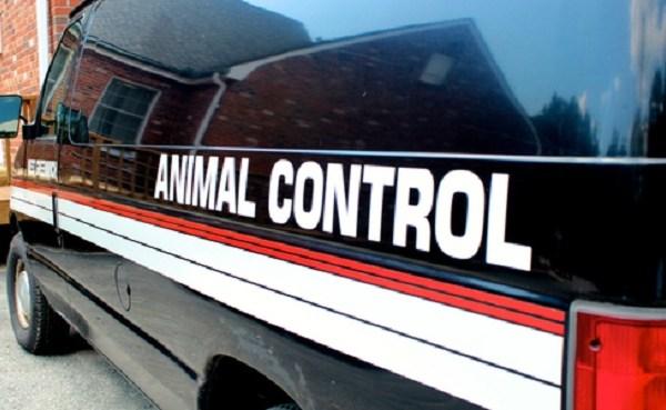 Animal Control generic resized
