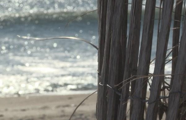 Beach_585268