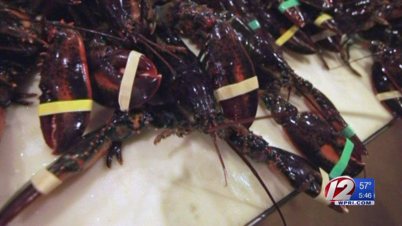 Lobster_prices_rise__affecting_businesse_0_20180423234950