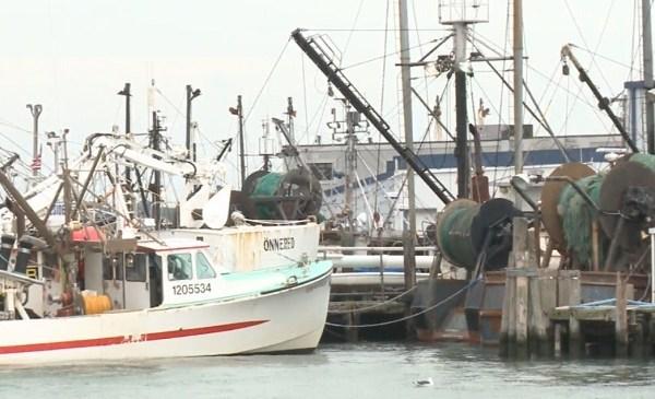 Fishing boats_556634