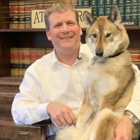 Attleboro mayor, dog go viral after special cross-country road trip
