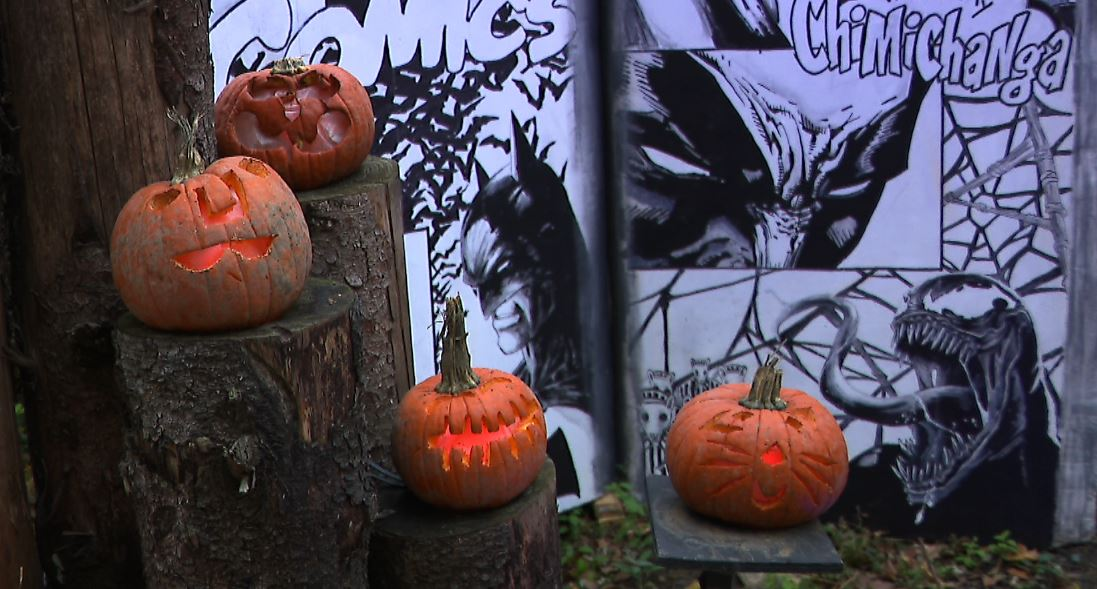 pumpkins_1541120301044.JPG