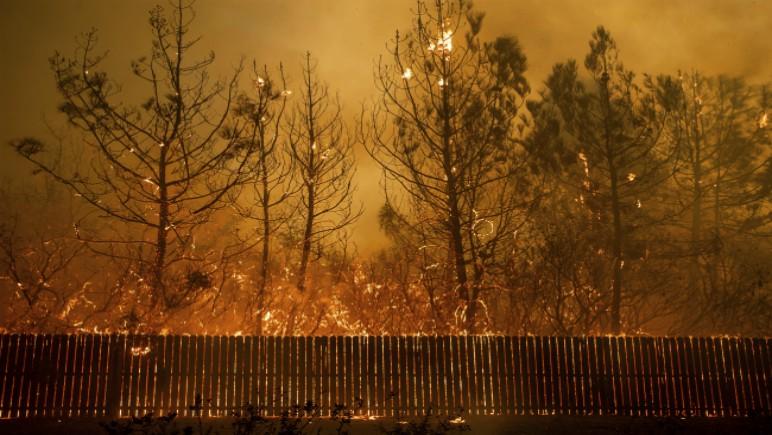 wildfires2_1542186563934.jpg