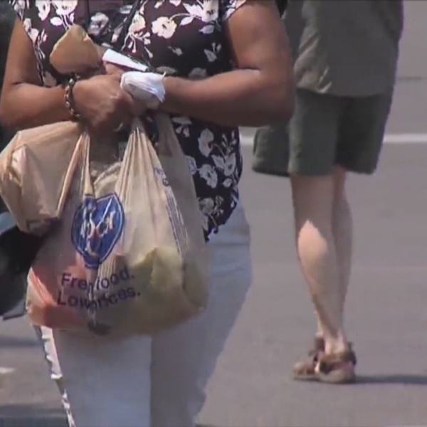 Providence on track to ban single-use plastic bags