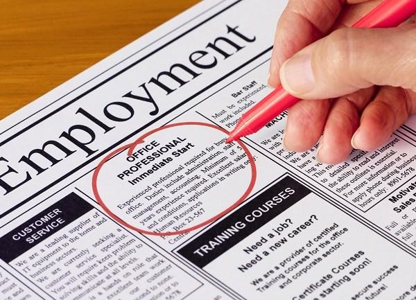 Employment job search
