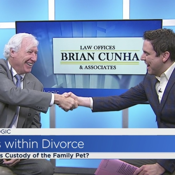 Legal Logic: Who gets custody of the pets?