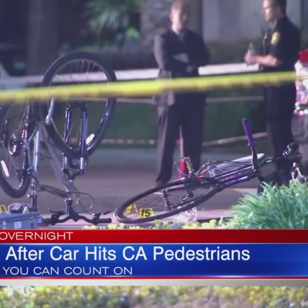 Police: Driver intentionally crashed into crowd of people