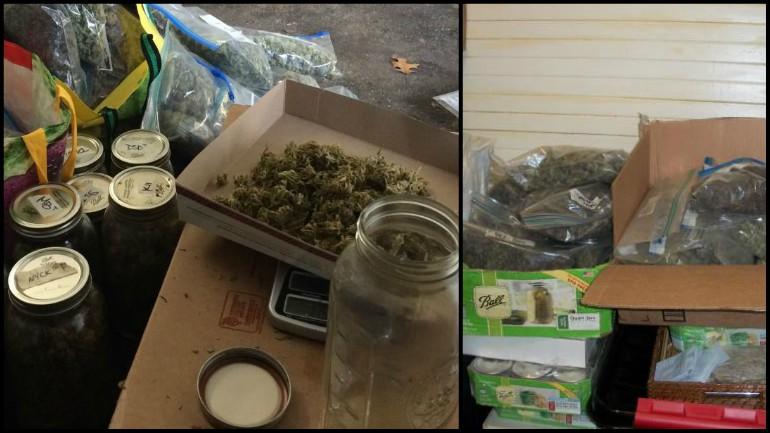 marijuana bust_1554519227708.jpg.jpg
