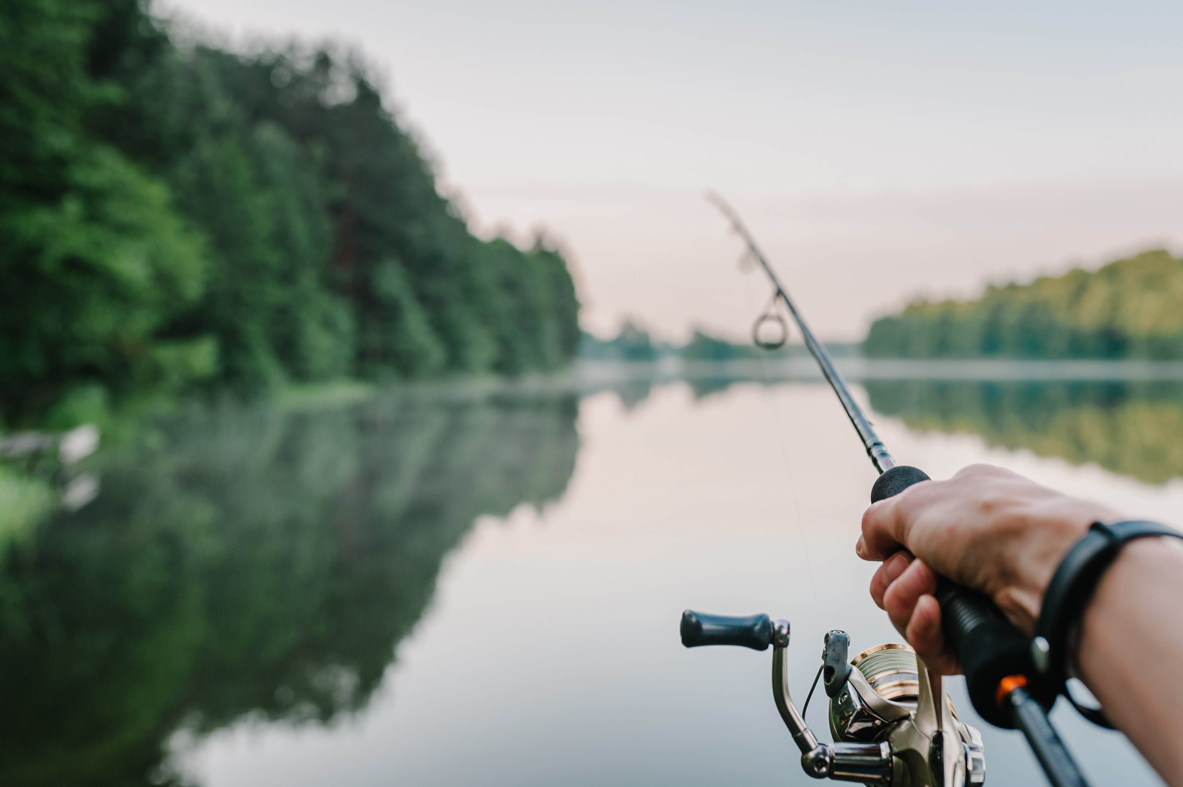 Final plans released for hunting, fishing on RI National Wildlife Refuges | WPRI.com